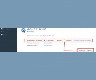 Автоматическое обновления ВКопт выставляем на своё усмотрение